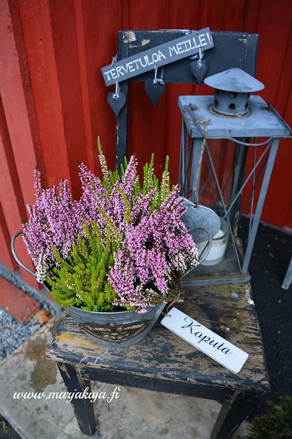 vanha tuoli kukkapoytana pihalla