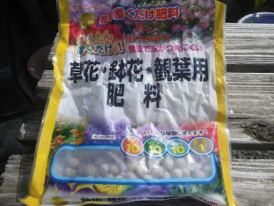 シマトネリコ 肥料