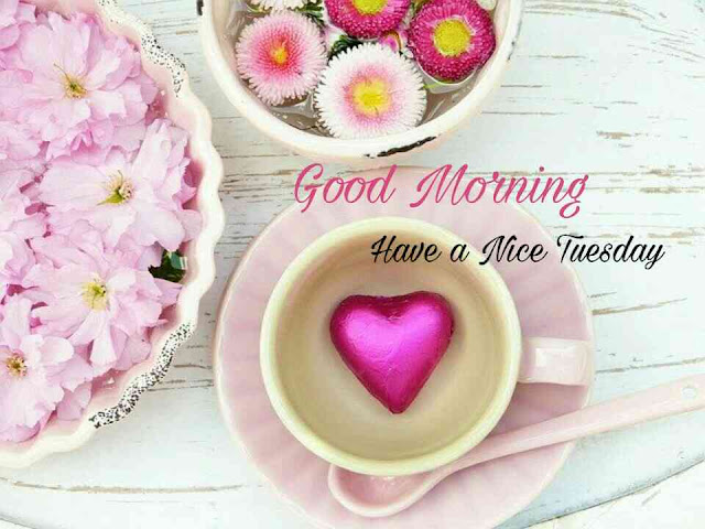 Good Morning Tuesday,Good morning tuesday blessings, have a nice tuesday, have a beautiful tuesday