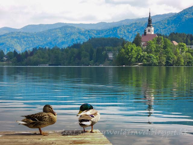 斯洛文尼亞, 碧湖, Lake Bled