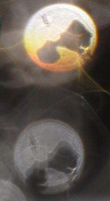 odd orb hole