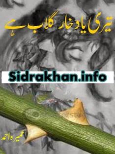Teri Yaad Khare Gulab Hai