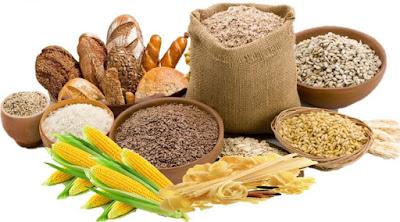 Fungsi karbohidrat, Protein, Lemak, dan Air pada Sistem Pencernaan Manusia
