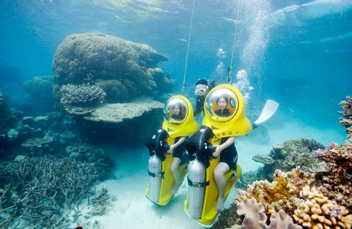 Fish Reef Island Hawaii Snorkeling Big