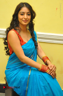 Telugu Actress Vaibhavi Stills in Blue Saree at Www.Meena Bazaar Movie Opening  0064.JPG