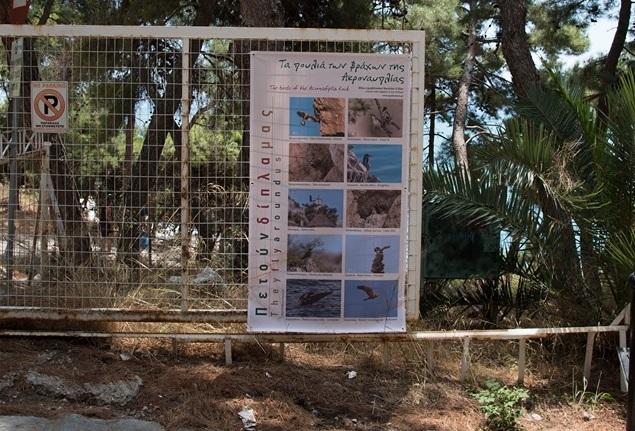 Ναύπλιο: Γνωριμία με τα πουλιά του υγροβιότοπου