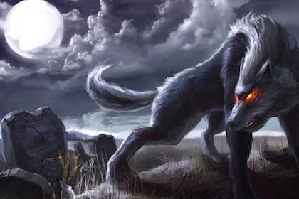 Phantom Black Dogs - Misteri yang Tidak Dapat Dijelaskan