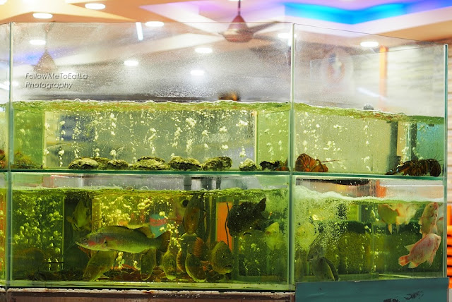 Salt Water Fish Tank With Live Swimming Fresh Seafood On Display
