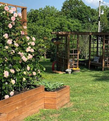 Jana Duggar garden