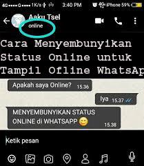 Cara Membuat WhatsApp Tampil Ofline  1