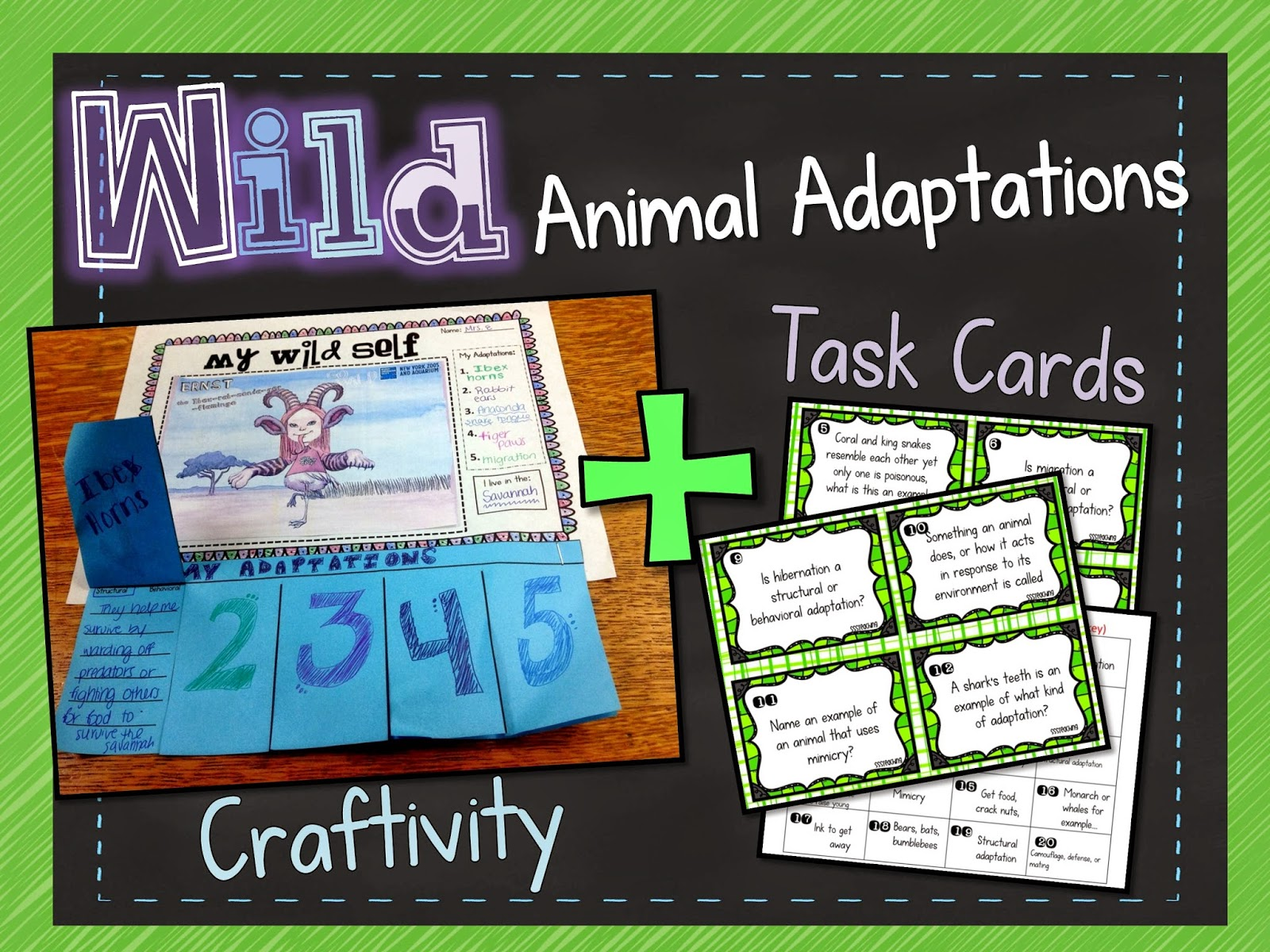 4th Grade Animal Adaptations Project