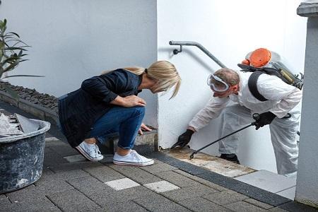 كيفية التخلص من النمل الصغير في المنزل , كيفية التخلص من النمل , طرق القضاء على النمل
