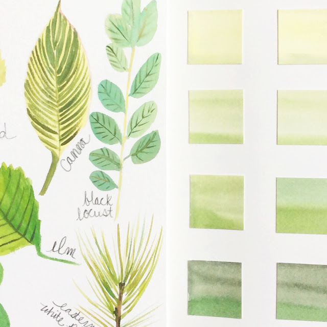 2x2, #2x2Sketchbook, Sketchbooks, collaborations, watercolor, painting, Dana Barbieri, Anne Butera
