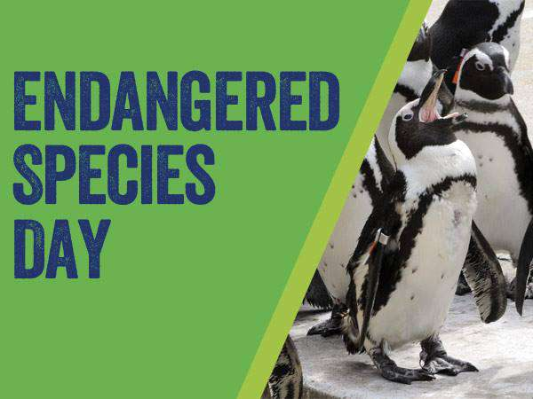 National Endangered Species Day Wishes Images