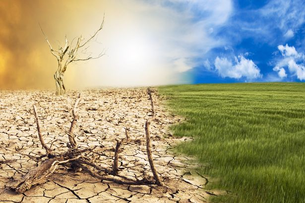 5 Paragraph Essay on Climate Change