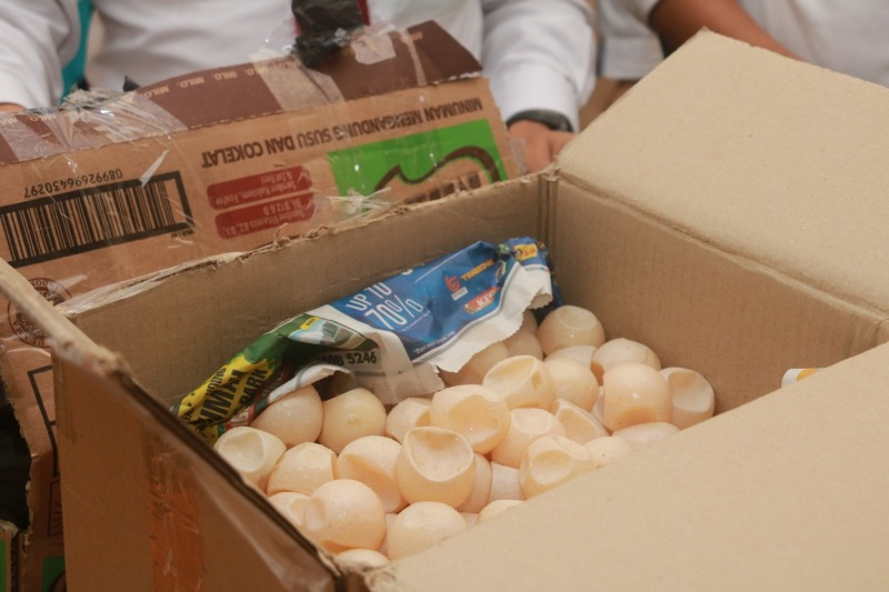 Polda Kepri Berhasil Amankan Ribuan Butir Telur Penyu, Ini Tersangkanya