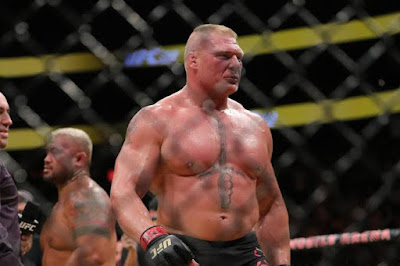 Brock Lesnar UFC fight and result !!