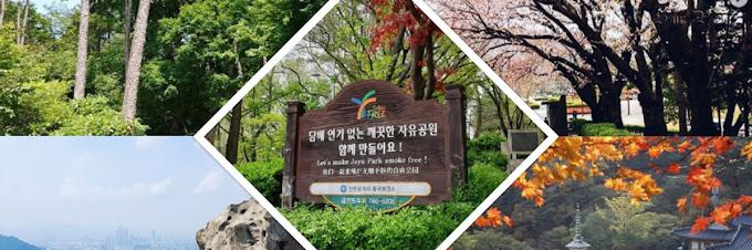 Deretan Wisata Populer di Seoul Ini Bisa Dikunjungi Hanya Sehari Loh