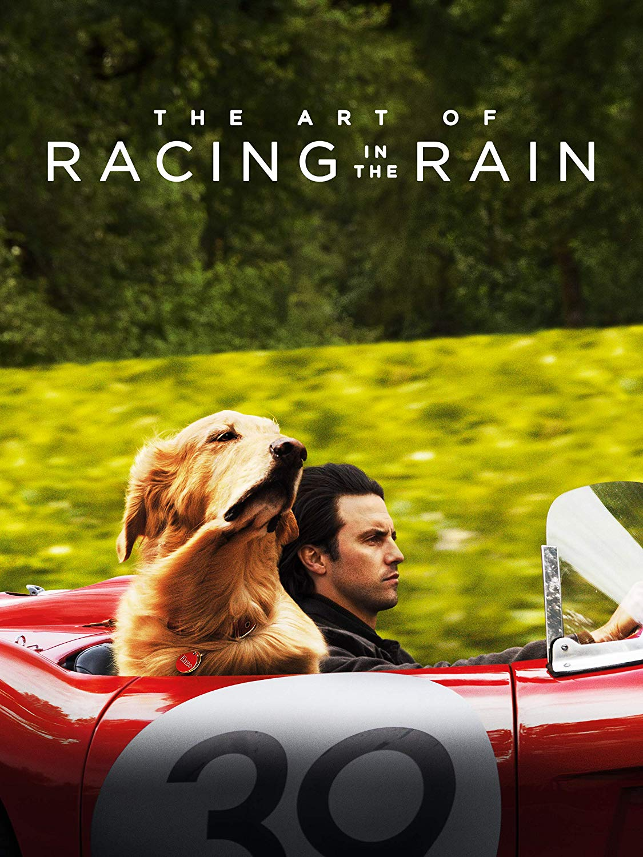 The Art of Racing in the Rain [2019] [DVD9] [NTSC] [Latino]