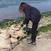 Παρέμβαση Πολιτών Δ.Θέρμης : Εξόρμηση καθαριότητας δημοτών στο παραλιακό μέτωπο του Δήμου μας