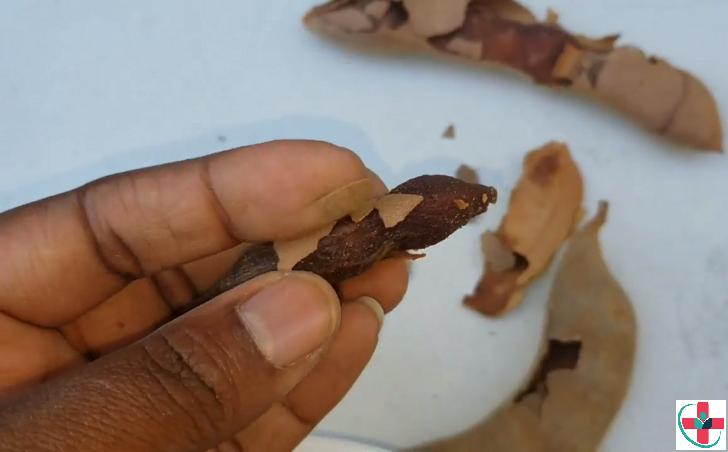 tamarind fruit (ukwaju)
