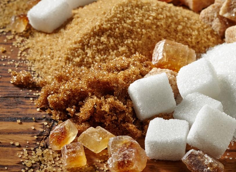 jual gula aren
