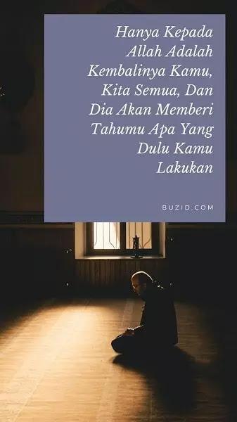 Kata Bijak Islami Penyejuk Hati