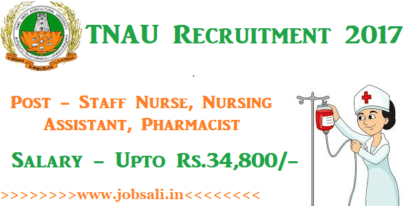 TNAU Job Vacancies, TNAU Vacancy, Nursing jobs in Tamil Nadu