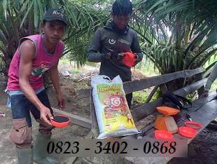 AGEN NASA DI Bulang Tengah Suku Ulu Musi Rawas - TELF 082334020868