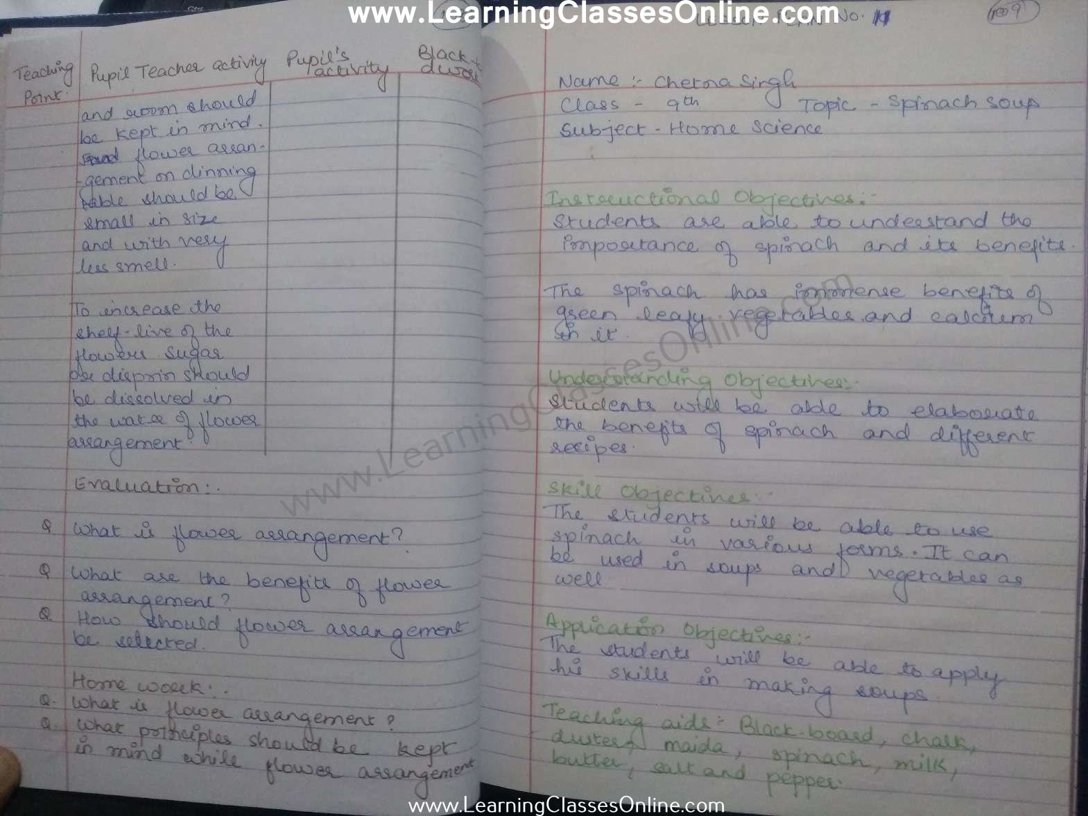Spinach Soup Lesson Plan Home Science Class 9 in English free download pdf