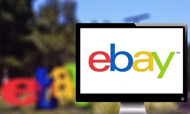 Cara Cepat Mencairkan Hasil Jualan Ebay dengan Payoneer