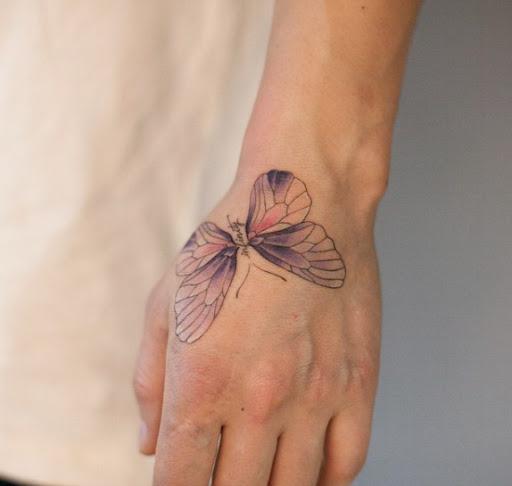Este deslumbrante borboleta