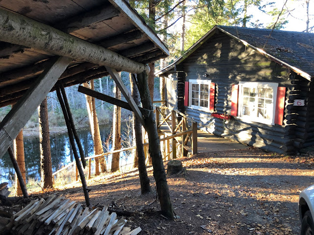 cottage in the woods with woodpile