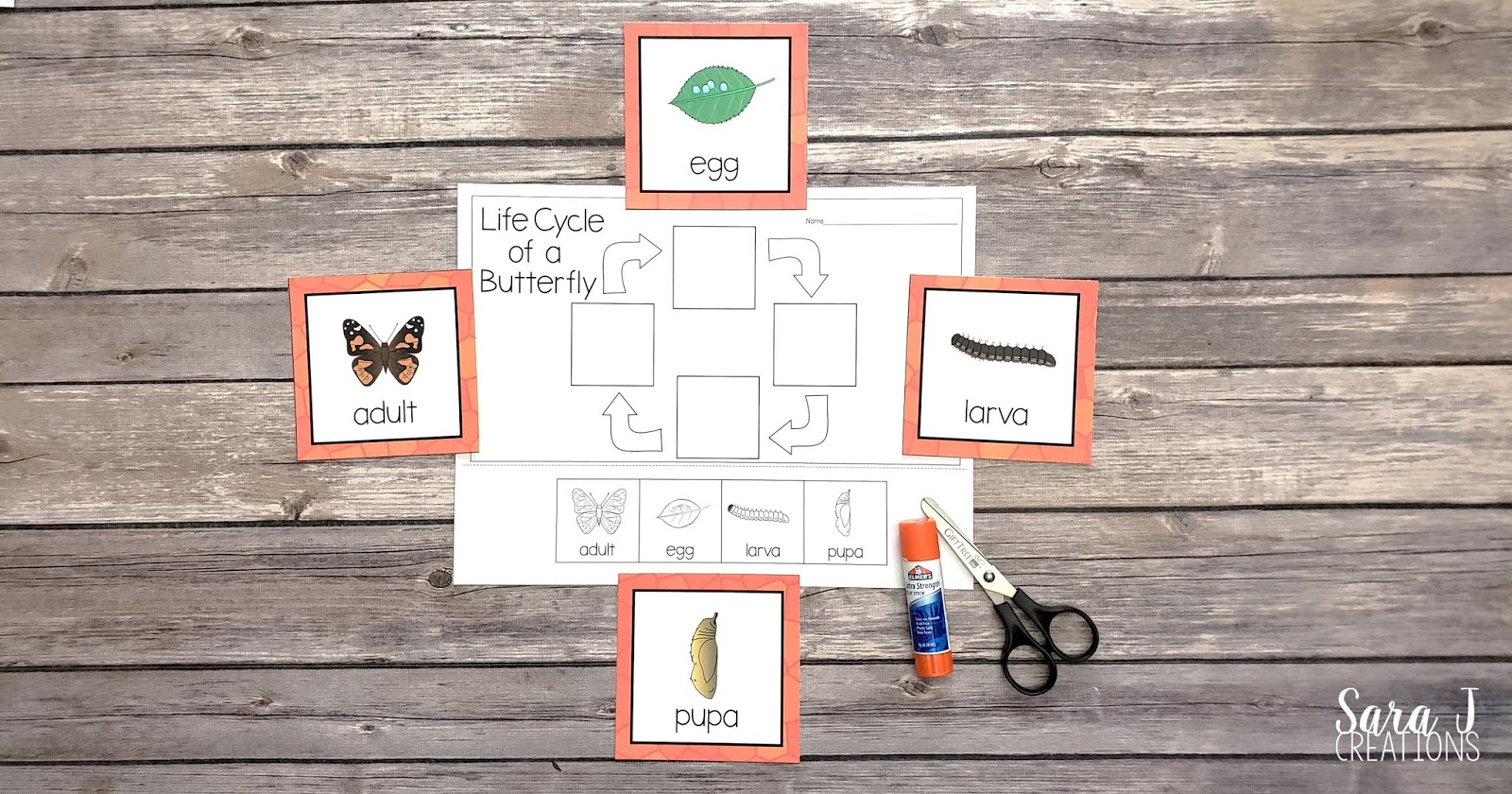 Learn about the life cycle of a butterfly with these free printables! Practice sequencing the life cycle with these cards and then complete a cut and glue activity.