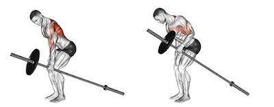 Single Arm T-Bar Row