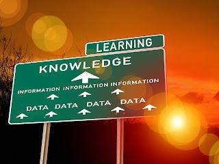 experiencia, asesor, consejero, mentor, tutor, orientador, psicólogo, guía, consultor, ayuda,