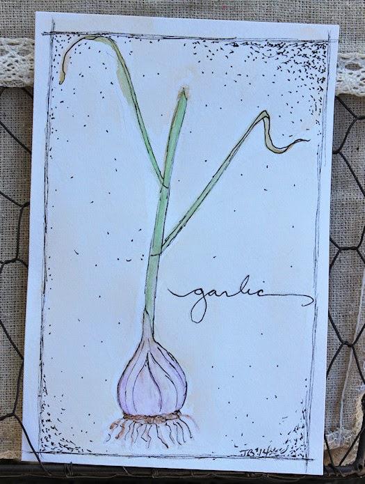 Garlic by Tori Beveridge 2014
