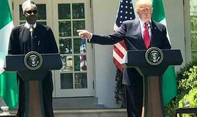 POLITICS: Ko Kun San Irin Rayuwa Da Donald Trump Yake So Buhari Ya Yi