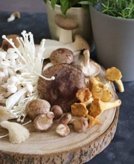 gambar Manfaat ajaib dari jamur shiitake