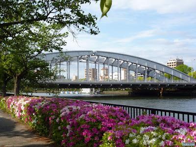 櫻宮橋とヒラドツツジ