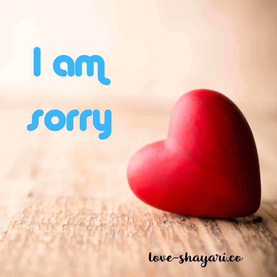 sorry photo