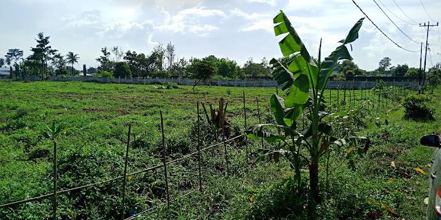 Foto Tanah Kosong Di Jl Rasmi Madirsan Samping Tol Tanjung Morawa Medan Sumatera Utara