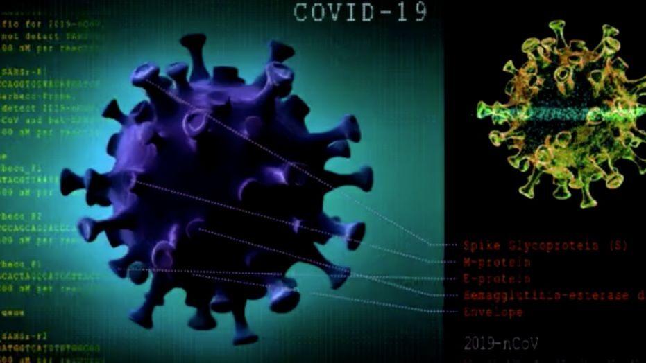 pandemic coronavirus, covid-19