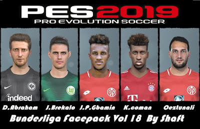 PES 2019 Bundesliga Facepack Vol 18 by Shaft