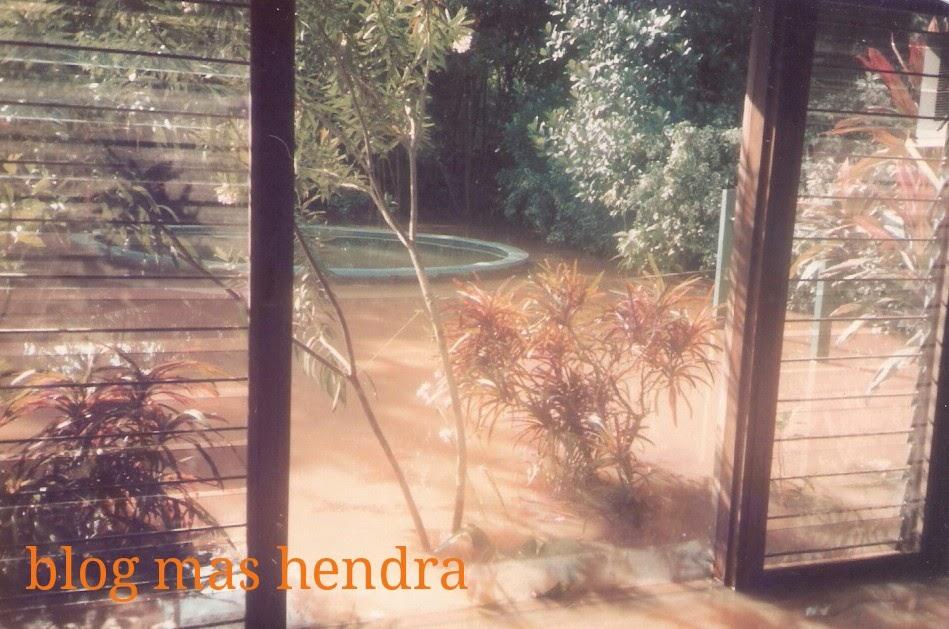 kebun dan kolam renang terendam banjir