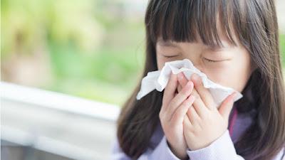 Cara Mengatasi Alergi Pada Hidung