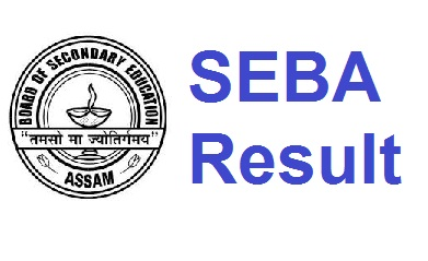 SEBA HSLC/AHM Compartmental Result