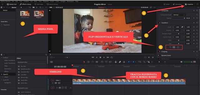 applicare il flip orizzontale e verticale ai video