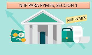 NIIF para PYMES sección 1