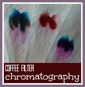 Coffee filter chromatography with children science experiment